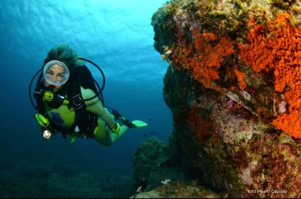 foto ambiente primo classificato in&out 2011 reflex